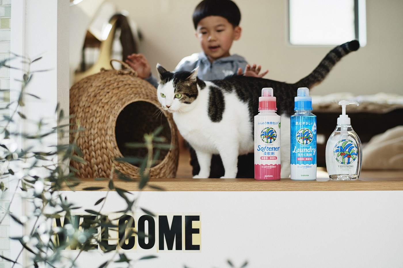 猫との写真を撮り続けることで、息子の成長を見守る #27 鈴木賢一さん