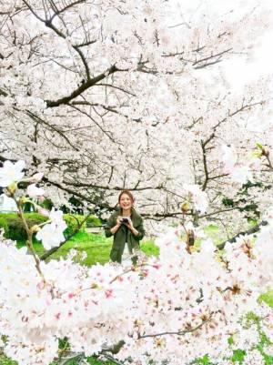 桜に囲まれたカーキアウターを着た女性