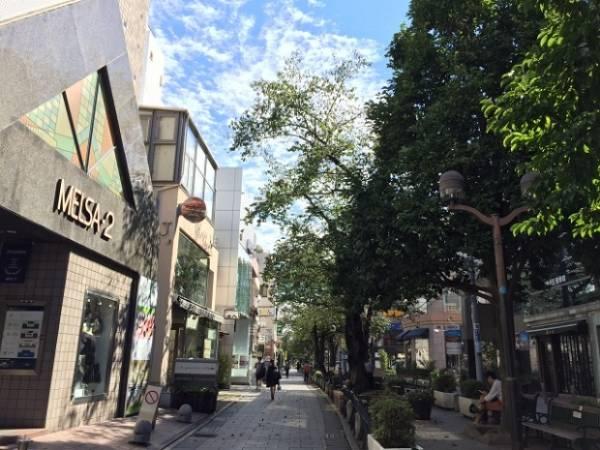 東横線には個性的な街がたくさん!