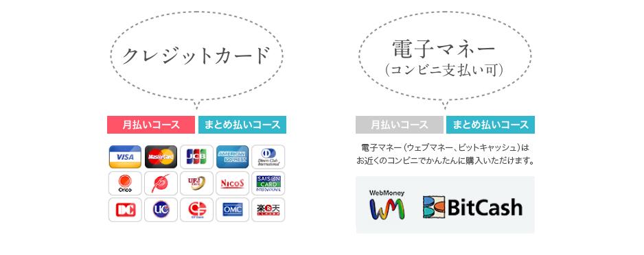 クレジットカード 電子マネー(コンビニ支払い可)